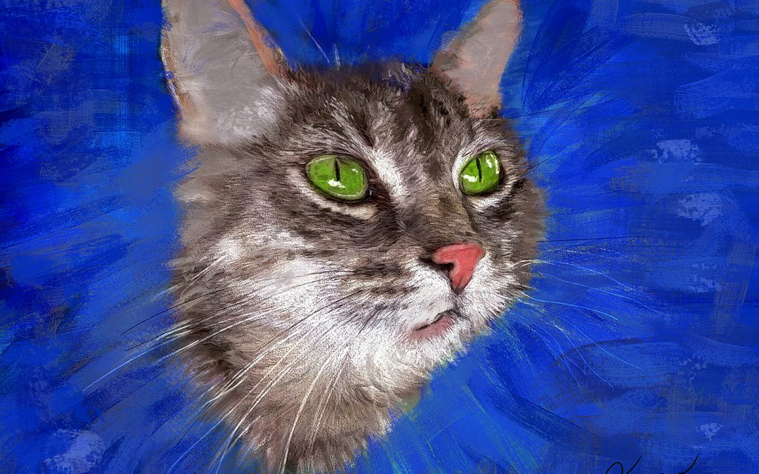 2016 07 28 NENYA Cat sm